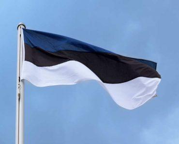 Estonia estudia lanzar su propia criptomoneda: Estcoin